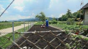Εξέταση τον καλλιεργητή με τον καλλιεργητή από πίσω από το φράκτη απόθεμα βίντεο