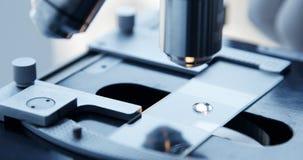 Εξέταση του δείγματος δοκιμής κάτω από το μικροσκόπιο στο εργαστήριο φιλμ μικρού μήκους