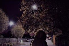 Εξέταση το φεγγάρι στοκ φωτογραφίες με δικαίωμα ελεύθερης χρήσης