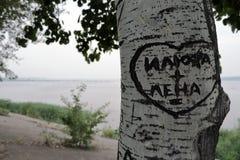 Εξίσωση αγάπης jpg Στοκ φωτογραφίες με δικαίωμα ελεύθερης χρήσης