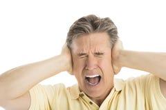Εξαγριωμένο άτομο που κραυγάζει καλύπτοντας τα αυτιά του Στοκ Φωτογραφίες