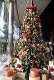 Εξαιρετικό χριστουγεννιάτικο δέντρο Στοκ Εικόνα