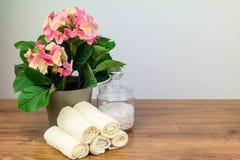 Εξαρτήματα λουτρών αντικείμενα υγιεινής πρ&omicr Στοκ Φωτογραφία