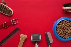 Εξαρτήματα της Pet στο κόκκινο υπόβαθρο Τοπ όψη Στοκ εικόνα με δικαίωμα ελεύθερης χρήσης