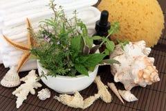 Herbal Spa επεξεργασία Στοκ Εικόνες
