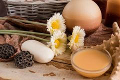 Εξαρτήματα SPA με το σαπούνι, κύπελλο με τα ξηρά chamomile λουλούδια, κομμάτι Α του άσπρου σαπουνιού, υγρό καφετί σαπούνι, κοχύλι Στοκ εικόνα με δικαίωμα ελεύθερης χρήσης