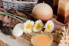 Εξαρτήματα SPA με το σαπούνι, κύπελλο με τα ξηρά chamomile λουλούδια, κομμάτι Α του άσπρου σαπουνιού, υγρό καφετί σαπούνι, κοχύλι Στοκ Εικόνα