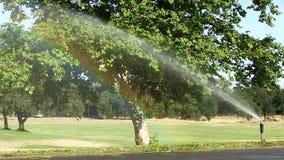 Εξασθενημένο ουράνιο τόξο στην υδρονέφωση από τον ψεκαστήρα στο πάρκο φιλμ μικρού μήκους