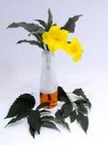 Εξασθενισμένα φύλλα με τα φωτεινά κίτρινα λουλούδια Στοκ φωτογραφία με δικαίωμα ελεύθερης χρήσης
