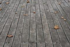 Εξασθενισμένα Sycamore φύλλα στα ξύλινα κεραμίδια πατωμάτων στοκ φωτογραφία