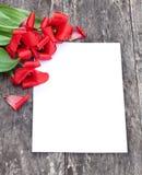 Εξασθενισμένες κόκκινες τουλίπες στο δρύινο καφετή πίνακα με το άσπρο φύλλο του pape Στοκ Εικόνες
