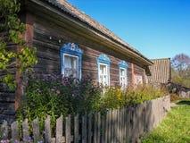 Εξασθενισμένος phlox στον κήπο κάτω από το παράθυρο Στοκ Φωτογραφία