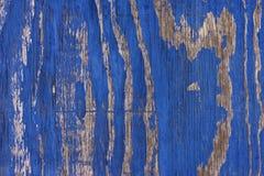 Εξασθενισμένο μπλε χρωματισμένο δάσος Στοκ Φωτογραφίες