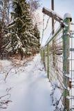 Εξασφαλισμένη ζώνη οδοντωτό καλώδιο φραγών επάνω από το δασικό βλασταημένο τοπίο χειμώνα δέντρων χιονιού Στοκ Εικόνες