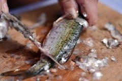 Εξεντέριση Firsherman και κλίμακες καθαρισμού των πρόσφατα πιασμένων ψαριών Στοκ Εικόνες