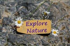 Εξερευνήστε την ετικέτα φύσης στοκ εικόνες