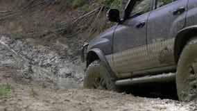 Εξερευνητικοί γύροι SUV μέσω των ξύλων αργά στο βρώμικο δρόμο φιλμ μικρού μήκους