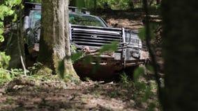 Εξερευνητικό SUV που οδηγά αν και οι δασικοί γύροι και οι στάσεις τζιπ στη σκηνή απόθεμα βίντεο