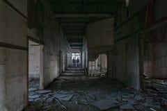 Εξερεύνηση των εγκαταστάσεων Στοκ Εικόνες