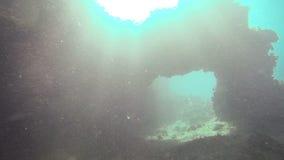 Εξερεύνηση υποβρύχια στο SAN Andres Κολομβία απόθεμα βίντεο