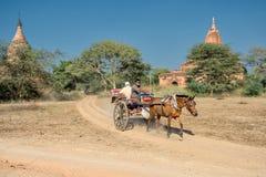 Εξερεύνηση Bagan Στοκ εικόνα με δικαίωμα ελεύθερης χρήσης