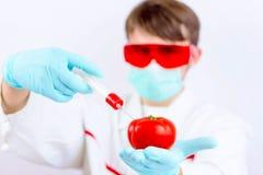 Εξεταστικά προϊόντα ΓΤΟ Στοκ φωτογραφίες με δικαίωμα ελεύθερης χρήσης