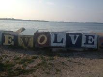 εξελιχθείτε Στοκ φωτογραφίες με δικαίωμα ελεύθερης χρήσης