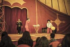 Εξοικειωμένο τσίρκο Στοκ Εικόνα