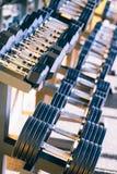 Εξοπλισμός βαρών αλτήρων σε μια σειρά στη γυμναστική Στοκ Εικόνα