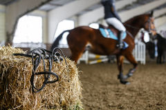 Εξοπλισμός και εκπαίδευση αλόγου σε περιστροφές αλόγων Στοκ φωτογραφίες με δικαίωμα ελεύθερης χρήσης