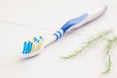 Εξοπλισμός οδοντοβουρτσών και οδοντικός υγιεινής κολλών Στοκ Φωτογραφία