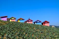 Εξοχικό σπίτι στον τομέα λάχανων Στοκ εικόνες με δικαίωμα ελεύθερης χρήσης