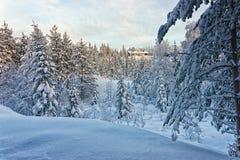 Εξοχικό σπίτι στο χιονώδες χειμερινό δάσος οριζόντιο Στοκ εικόνα με δικαίωμα ελεύθερης χρήσης