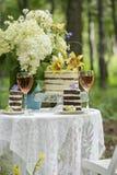 Εξυπηρέτηση ενός ρομαντικού πικ-νίκ με το κέικ στοκ εικόνες με δικαίωμα ελεύθερης χρήσης