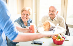 Εξυπηρετώντας συνταξιούχο ανώτερο ζεύγος σερβιτόρων που τρώει στο vegan εστιατόριο στοκ φωτογραφία