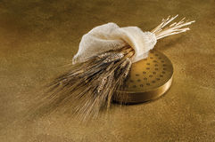 Εξωθήστε και σίτος στο χρυσό στοκ φωτογραφία με δικαίωμα ελεύθερης χρήσης
