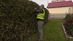 Εξωραΐζοντας εργαζόμενος που ελέγχει το φράκτη θάμνων απόθεμα βίντεο