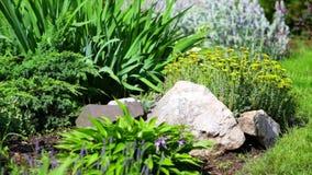 εξωραϊσμένη κήπος αυλή Ένα όμορφο εξωραϊσμένο ναυπηγείο απόθεμα βίντεο