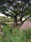 Εξωραϊσμένος επίσημος κήπος Στοκ Φωτογραφία