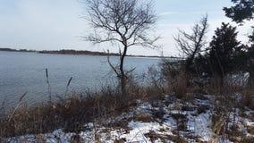 Εξωραϊσμένος χειμώνας στοκ εικόνες