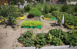 Εξωραϊσμός σε μια πλοκή κήπων στοκ εικόνες με δικαίωμα ελεύθερης χρήσης