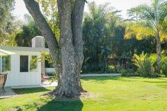 Εξωτερικός κήπος ενός σπιτιού πολυτέλειας στοκ φωτογραφία με δικαίωμα ελεύθερης χρήσης