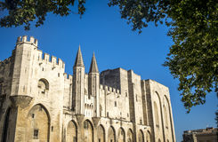 Εξωτερικό Palais des Papes, της περιοχής παγκόσμιων κληρονομιών της ΟΥΝΕΣΚΟ, και του CH Στοκ Εικόνα