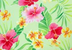 εξωτικά λουλούδια ανασ Στοκ Εικόνα