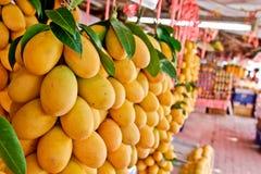 Εξωτικά ταϊλανδικά φρούτα. Maprang, της Παρθένου Μαρίας δαμάσκηνο, Gandaria, Marian Στοκ Εικόνα