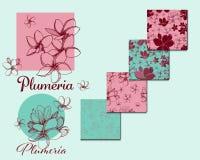 Εξωτικά τροπικά λουλούδια Συλλογή Plumeria διανυσματική απεικόνιση
