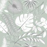 Εξωτικά φύλλα, άνευ ραφής ρεαλιστικό τροπικό σχέδιο φύλλων τροπικών δασών Φύλλο φοινικών, φύλλο μπανανών, hibiscus, λουλούδια plu Στοκ εικόνες με δικαίωμα ελεύθερης χρήσης