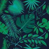 Εξωτικά φύλλα, άνευ ραφής ρεαλιστικό τροπικό σχέδιο φύλλων τροπικών δασών Φύλλο φοινικών, φύλλο μπανανών, hibiscus, λουλούδια plu Στοκ φωτογραφία με δικαίωμα ελεύθερης χρήσης
