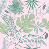 Εξωτικά φύλλα, άνευ ραφής ρεαλιστικό τροπικό σχέδιο φύλλων τροπικών δασών Φύλλο φοινικών, φύλλο μπανανών, hibiscus, λουλούδια plu Στοκ εικόνα με δικαίωμα ελεύθερης χρήσης
