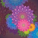 Εξωτική ανασκόπηση λουλουδιών Στοκ Φωτογραφία